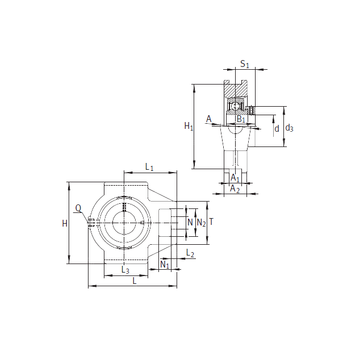 PTUE55 INA Bearing Units