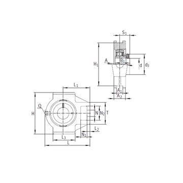 PTUE55 INA Bearing Units #1 small image